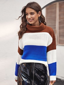 Cut And Sew Turtleneck Sweater