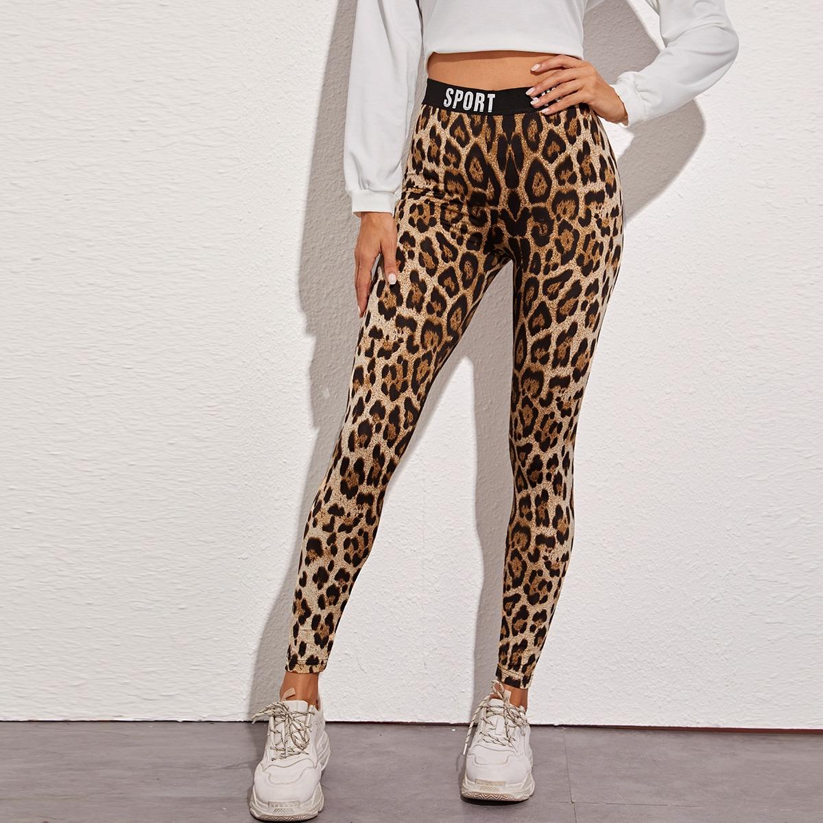 Леопардовые леггинсы с текстовой лентой