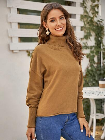 Turtle Neck Drop Shoulder Sweater