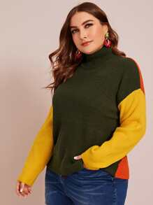 Plus Colorblock Ribbed Knit Turtleneck Sweater