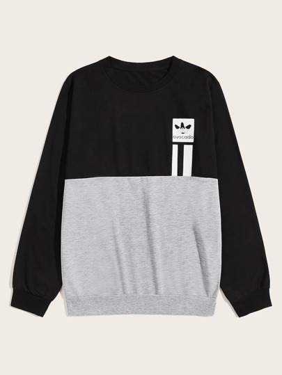 Men Two Tone Letter Graphic Sweatshirt