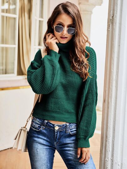 Turtleneck Ribbed Knit Solid Sweater