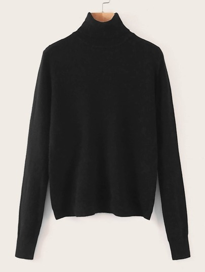 Turtle Neck Solid Sweater