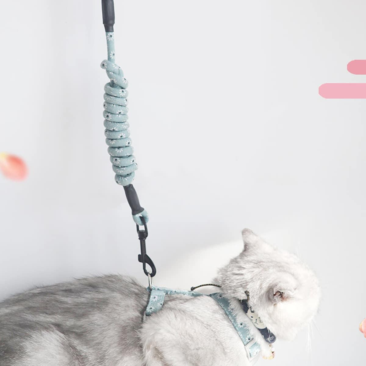 1 Stück Katzenleine mit Gänseblümchen Muster & 1 Stück Geschirr