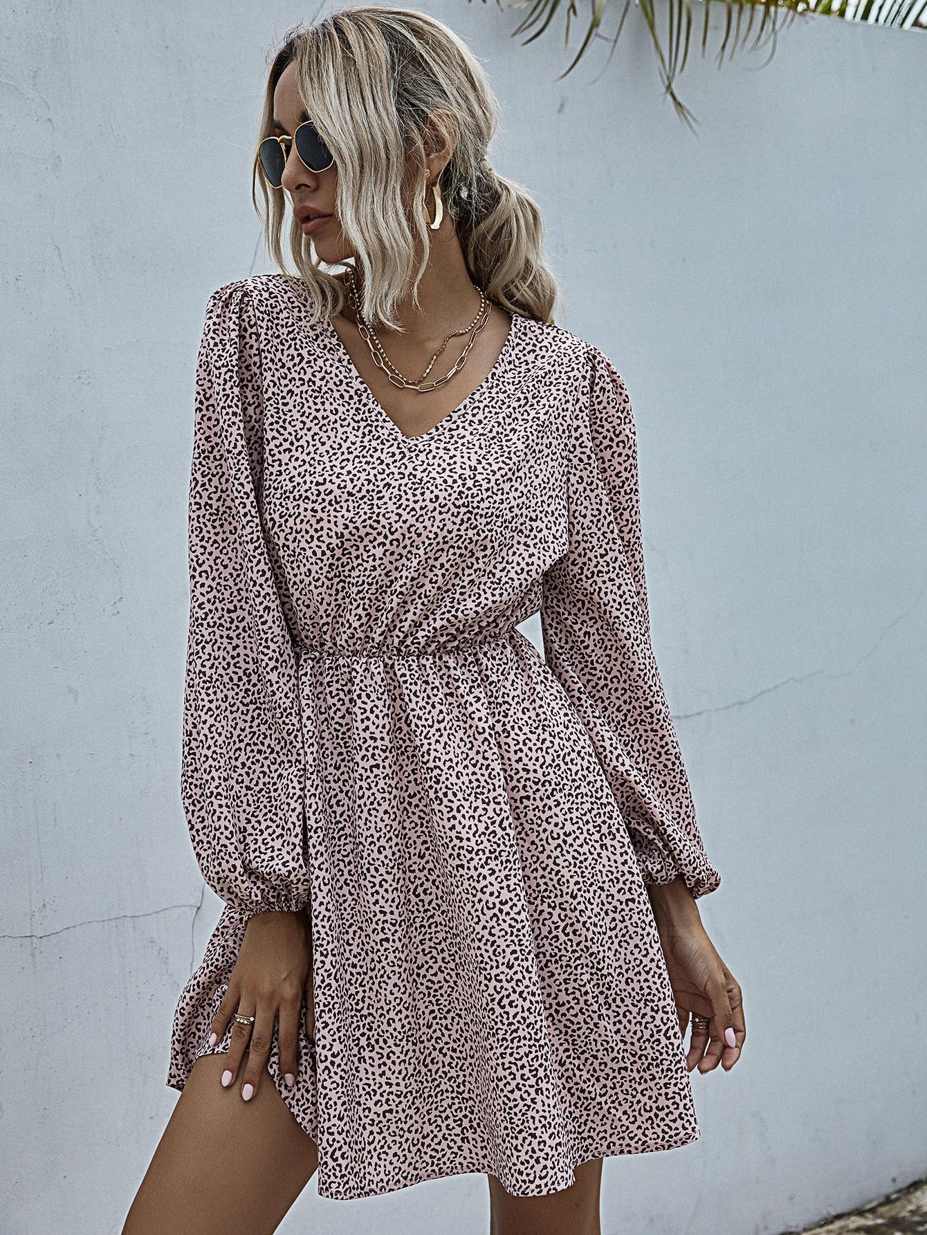 Leopard Print V Neck A-Line Dress thumbnail