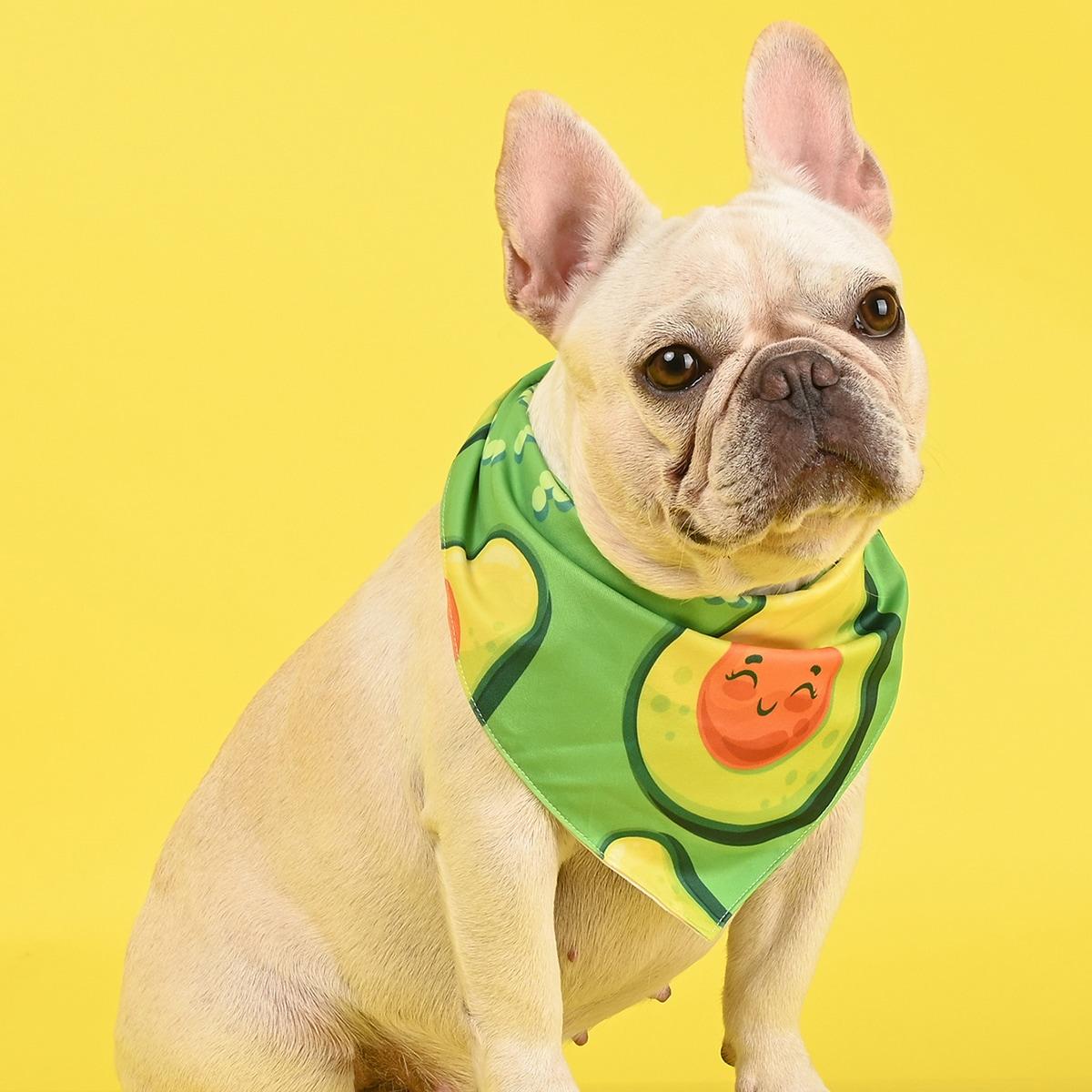 Bandana con stampa avocado per cane 1 pezzo