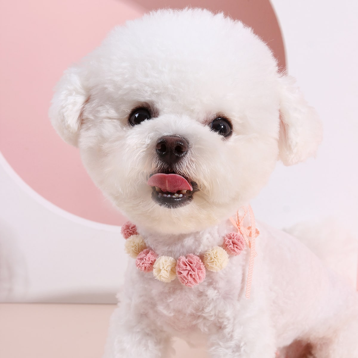 1 Stück Hund Halskette mit Pom-pom Dekor