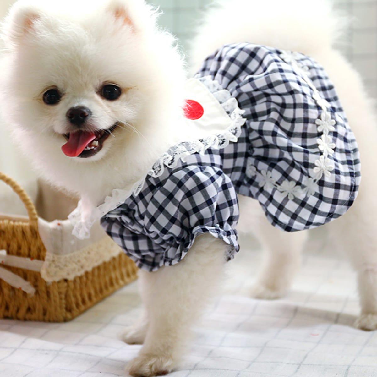 1 pièce Robe pour chien à carreaux