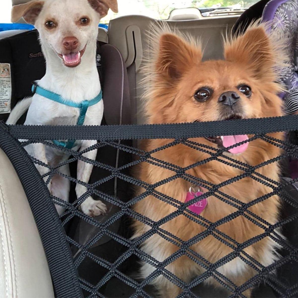 Kfz-Sicherheitsnetz im im Freien für Hunde