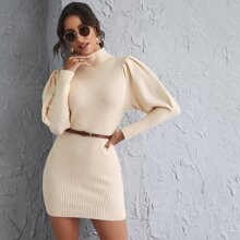 Gigot Sleeve Solid Sweater Dress