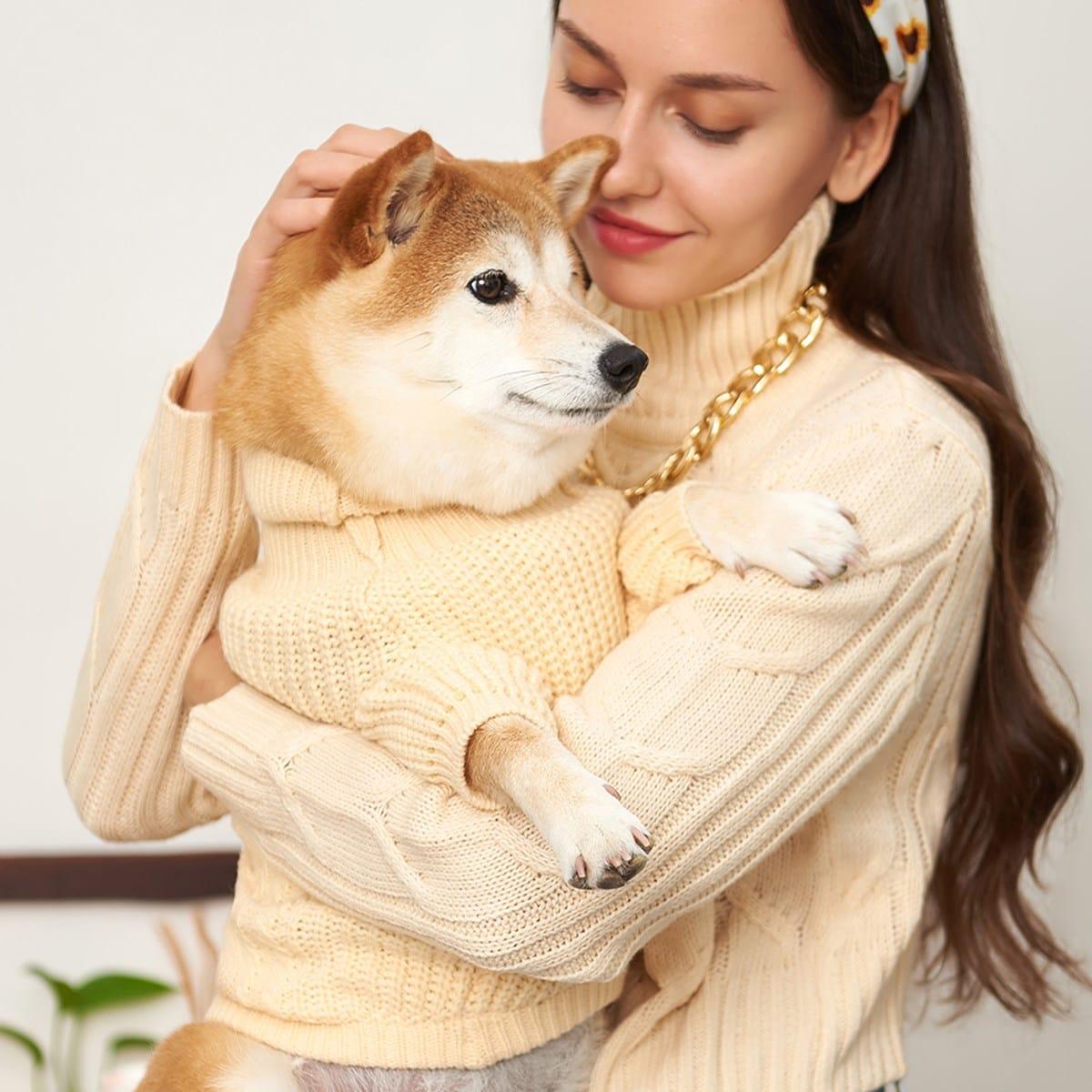 Pull de chien simple