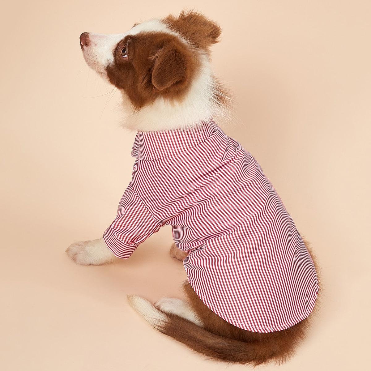 1 Stück Hemd mit Nadelstreifen Muster für Hunde
