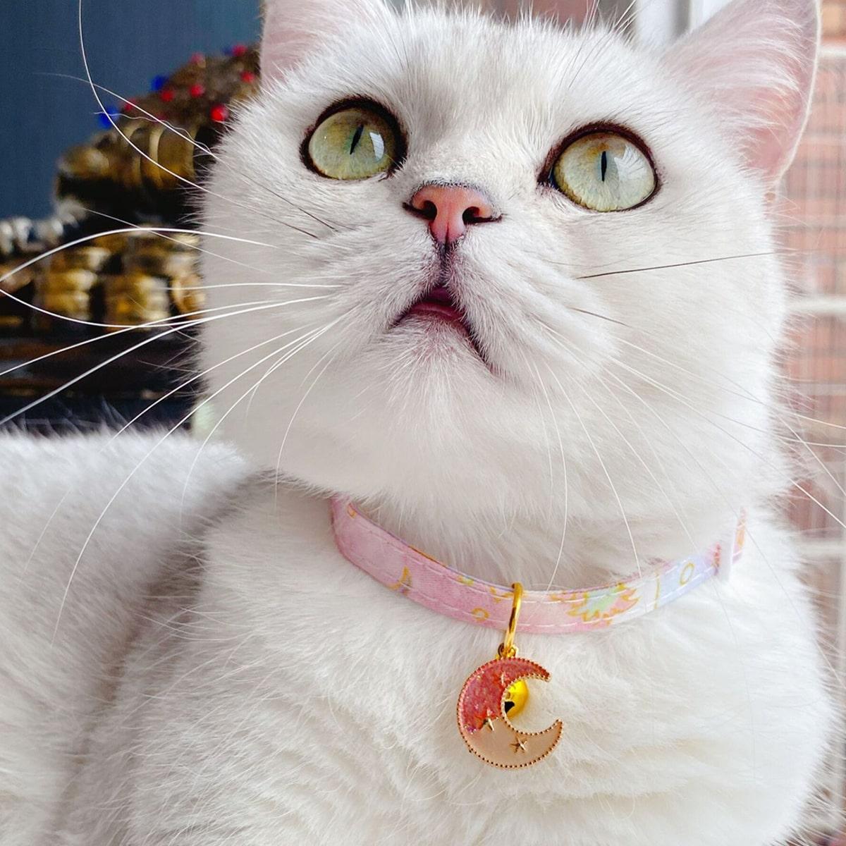 1 Stück Katzenhalsband mit Mond & Glocke Anhänger