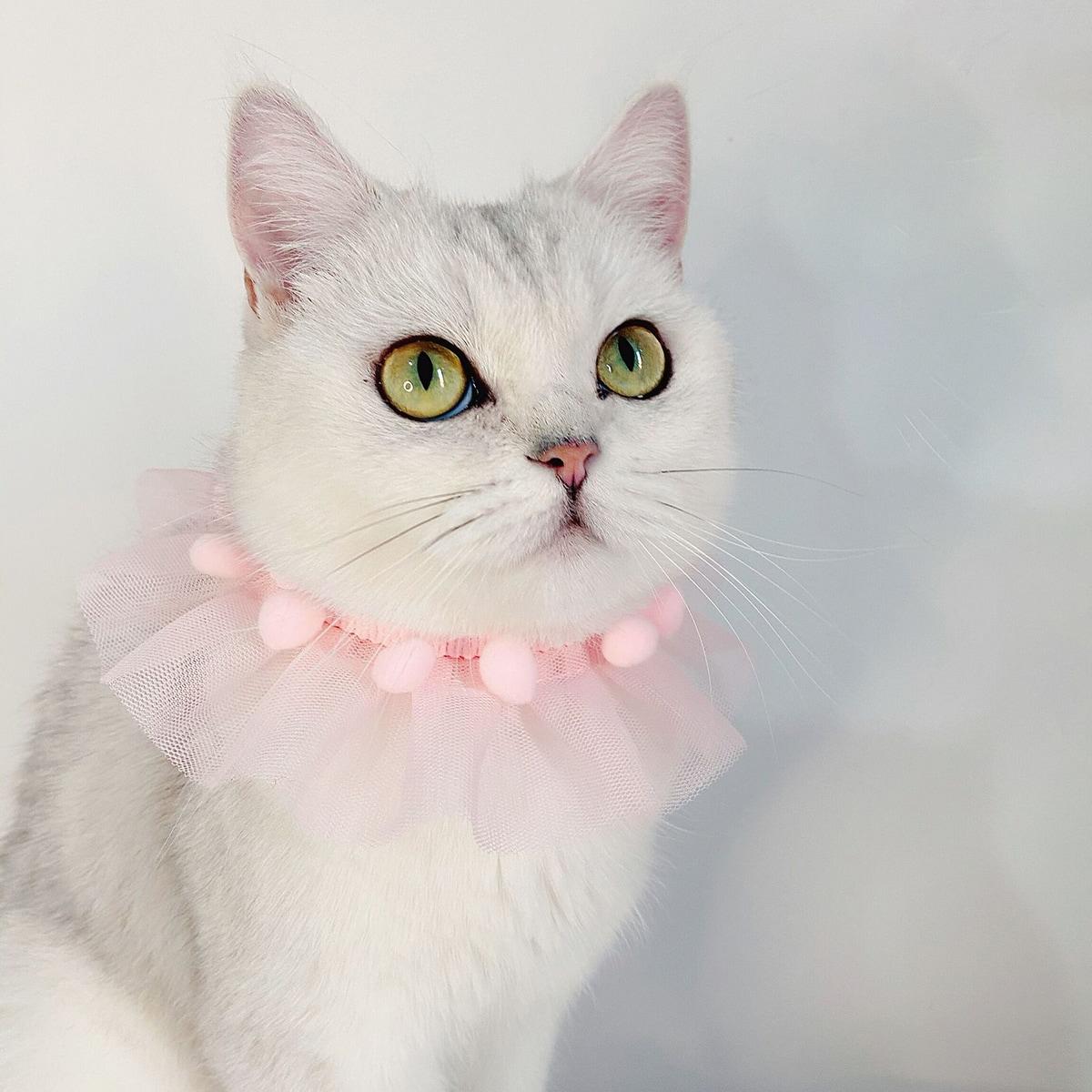 Halskette mit Pompons Dekor und Netzstoff