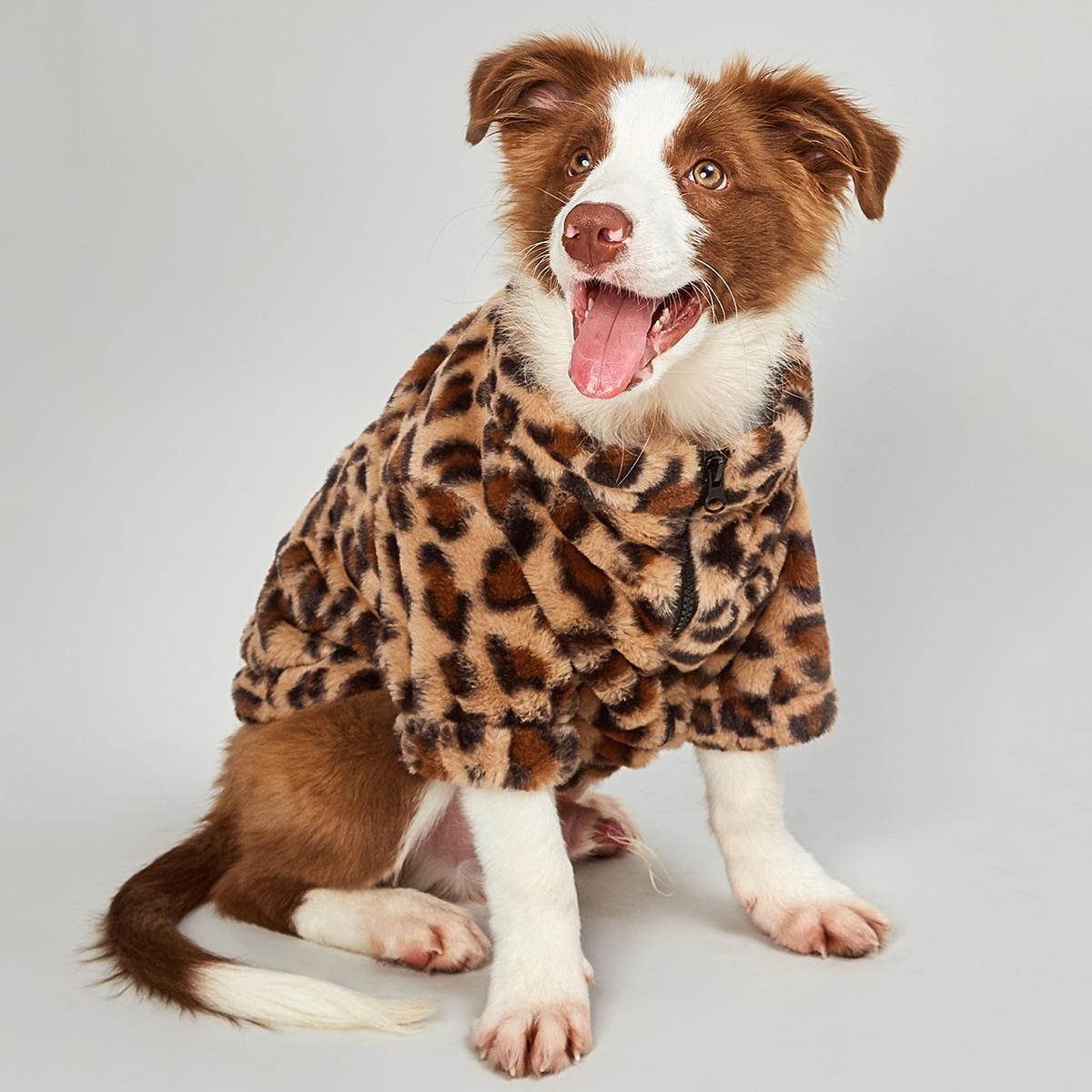Пальто с леопардовым принтом на молнии для собак