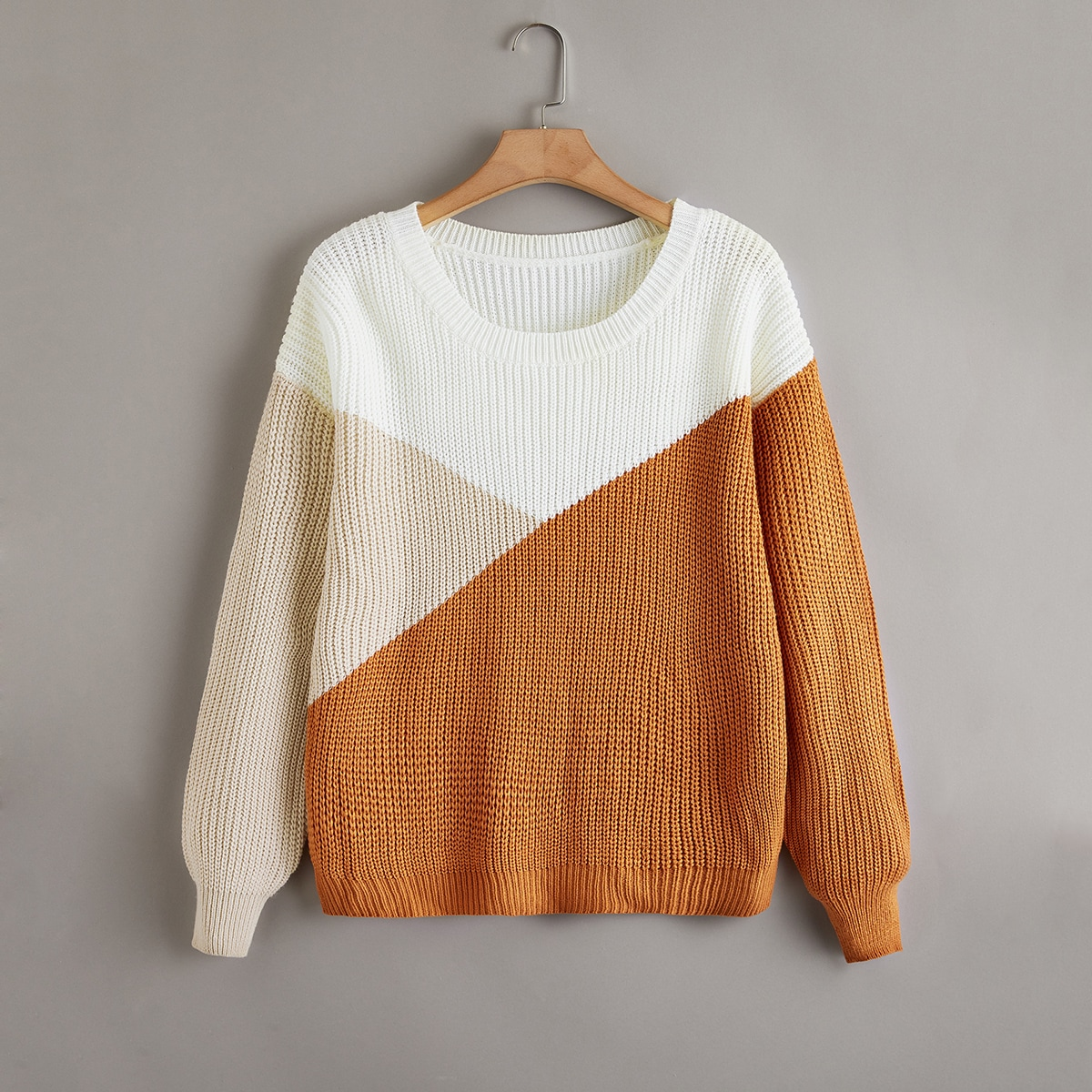 SHEIN Casual Kleurblok Grote maat: trui