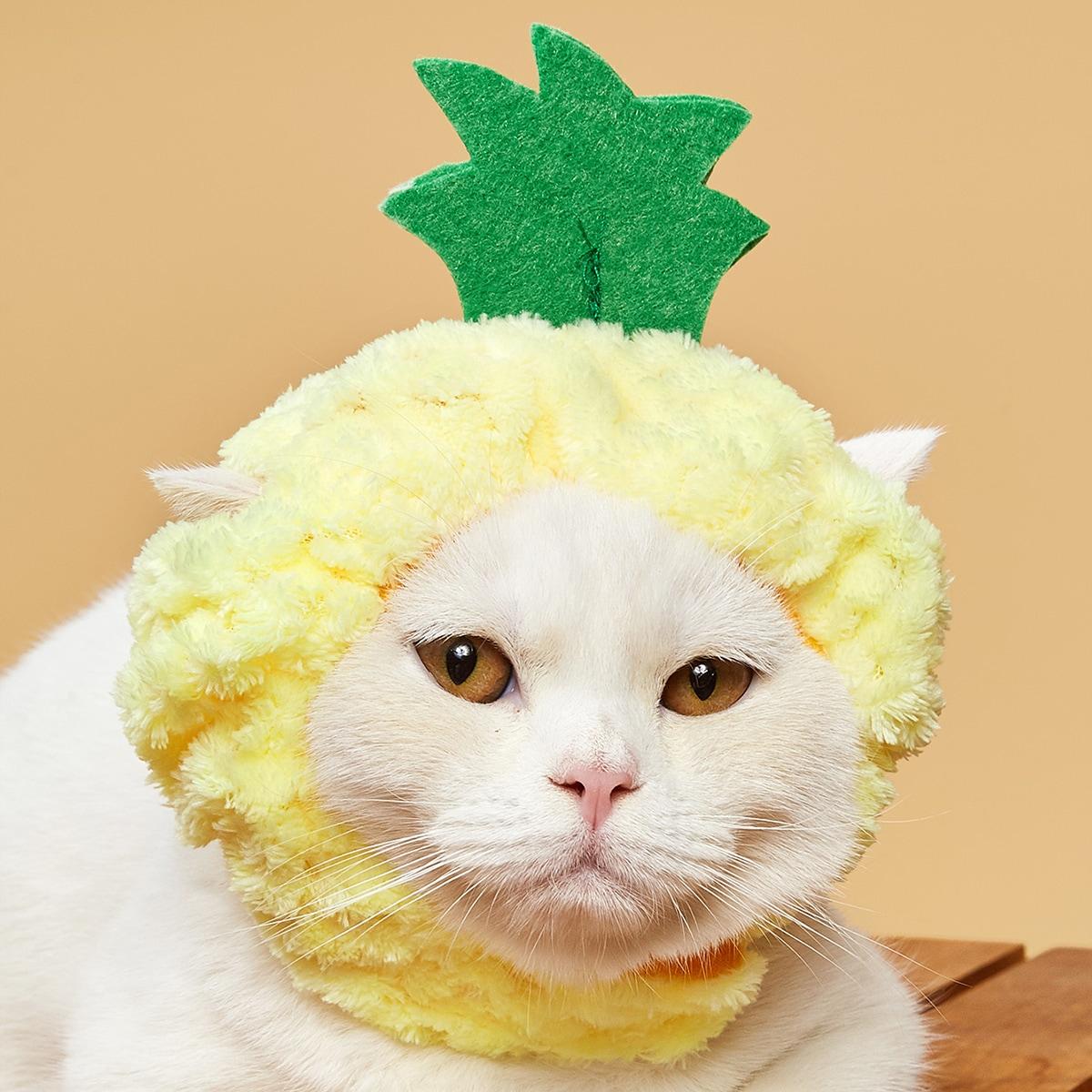 Pineapple Design Cat Hat