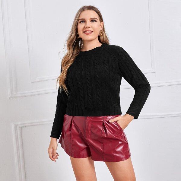Plus Raglan Sleeve Cable Knit Sweater, Black