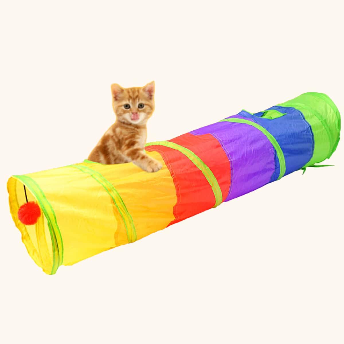 Katze buntes Tunnel Spielzeug