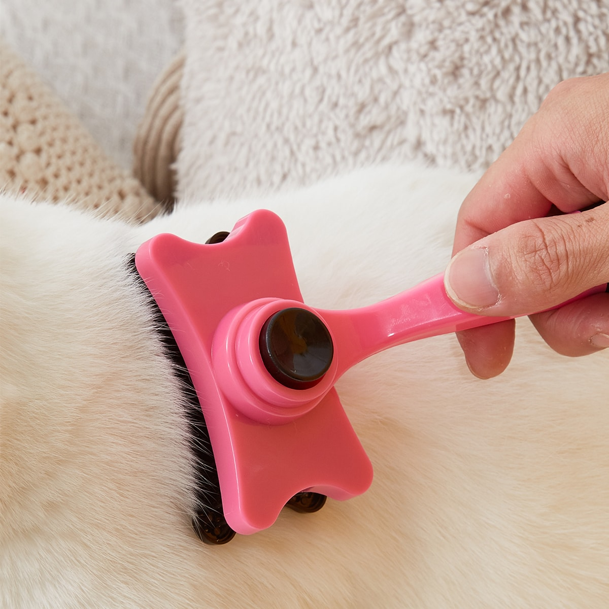 Zweifarbige Katzenpflegebürste