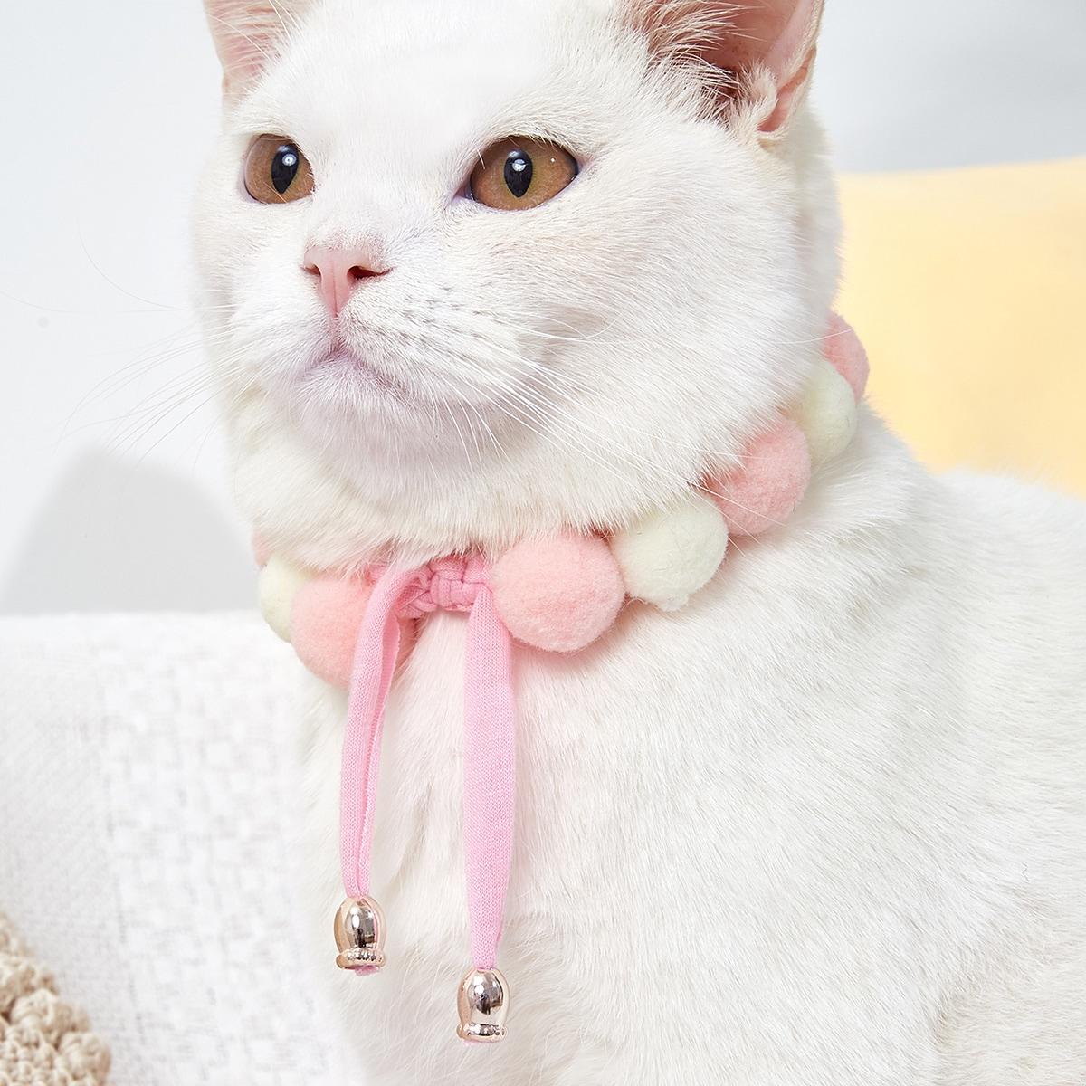 Collier pour chat perlé avec pompons