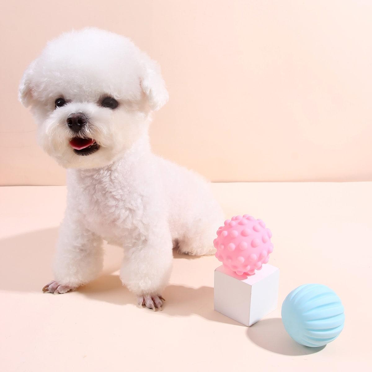 2 Stücke Einfarbiges Spielzeug für Hund