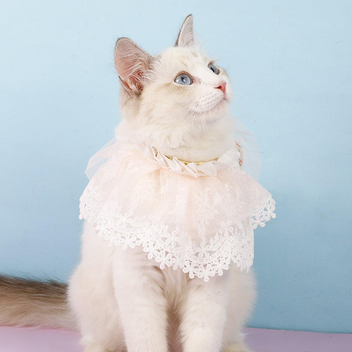 Collier en dentelle pour chat avec fausse perle