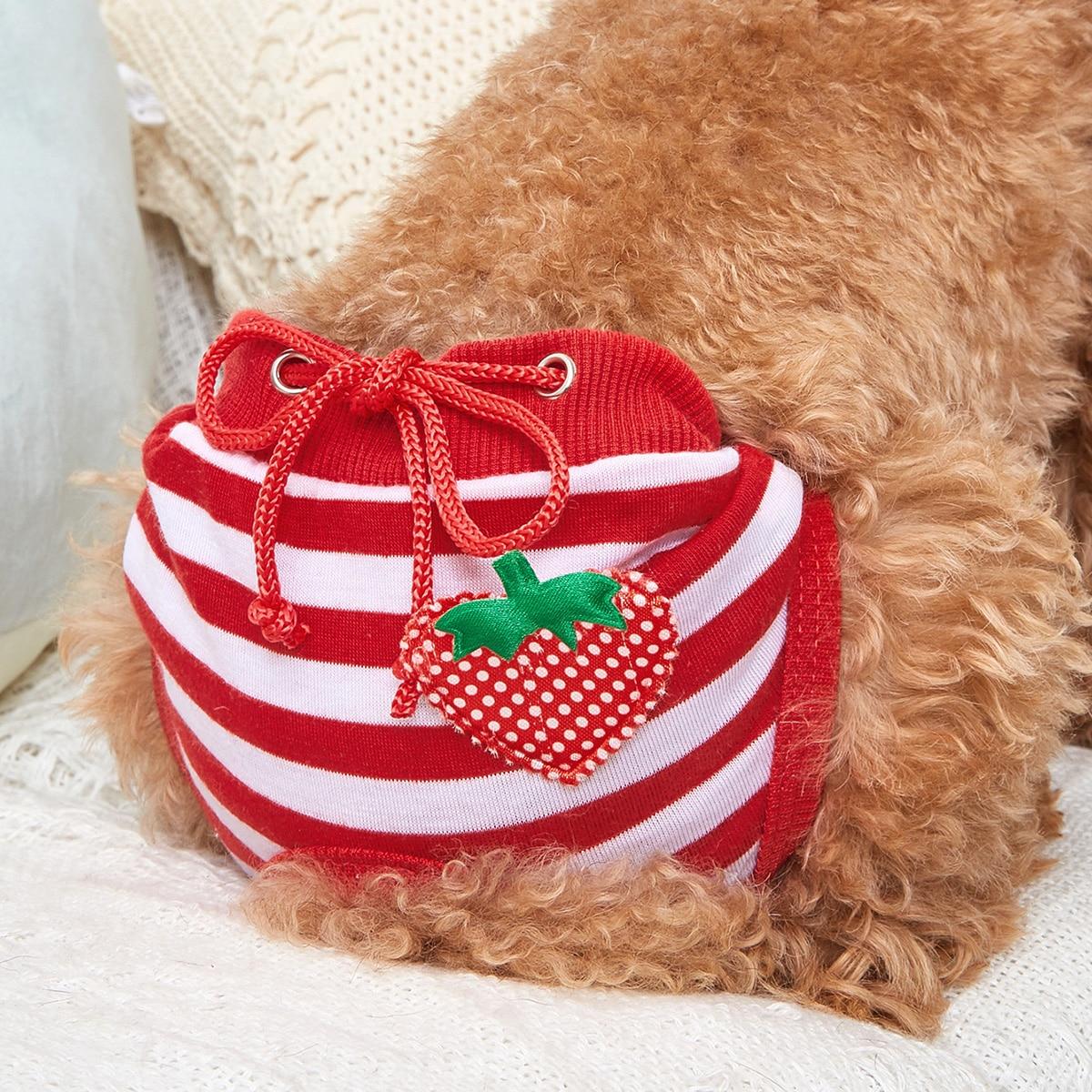 Hund Hygienehose mit Erdbeere Dekor und Streifen