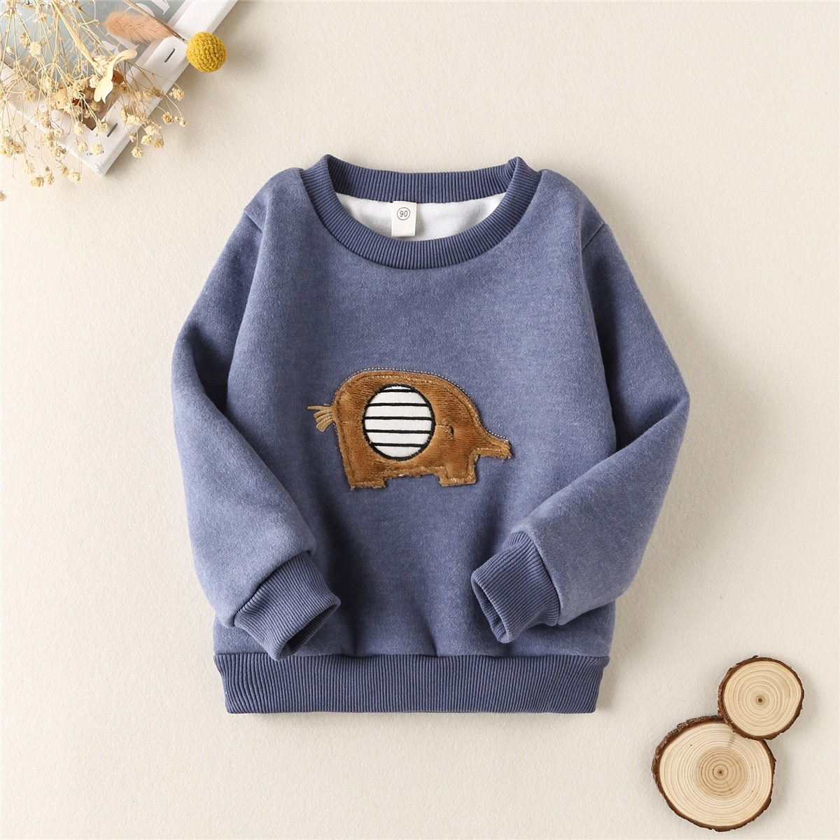 Toddler Boys Cartoon Patched Thermal Lined Sweatshirt