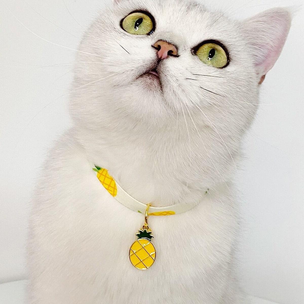 Katze Halskette mit Ananas Dekor