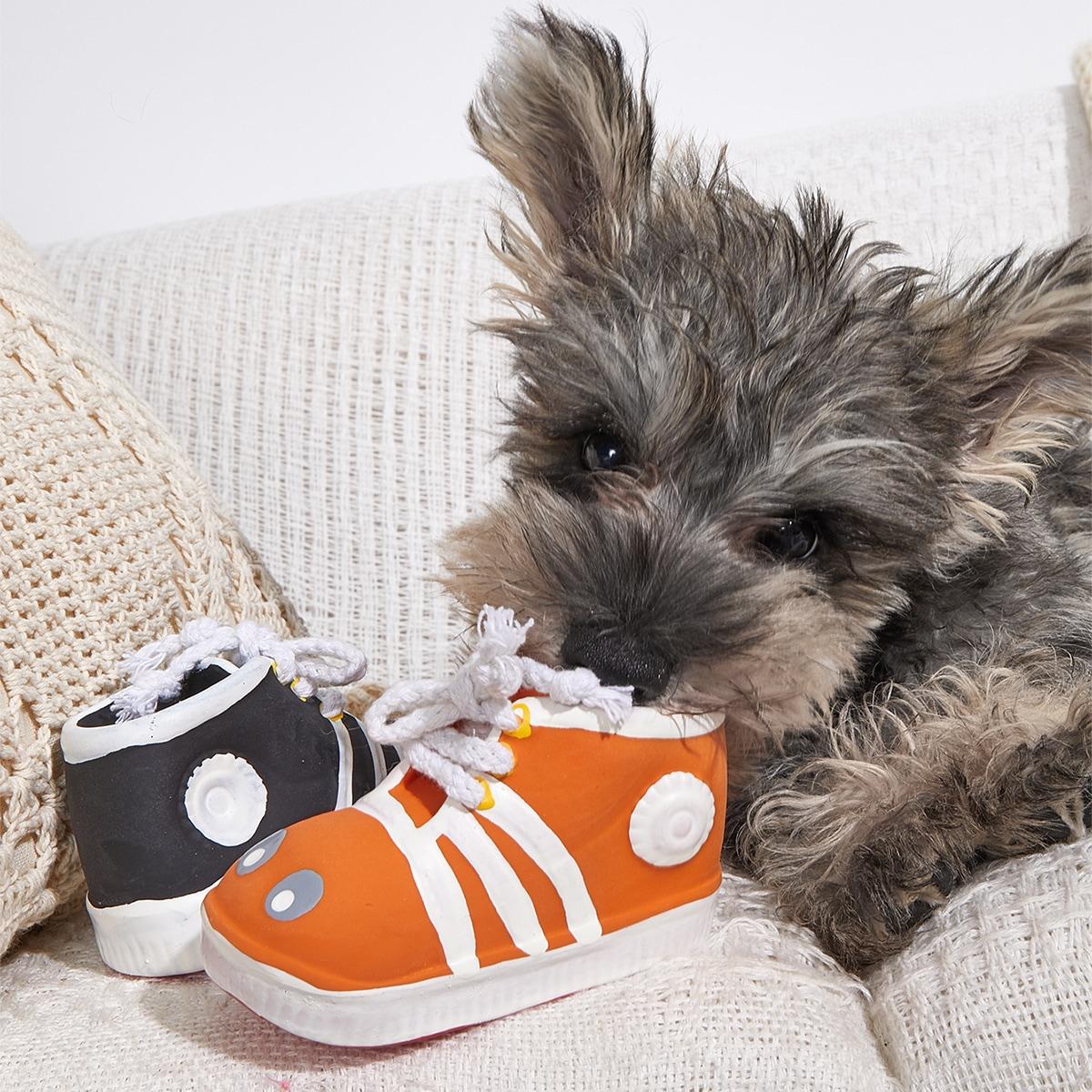 1 Stück zufällige Farbe Haustier Soundspielzeug mit Schuhe Design