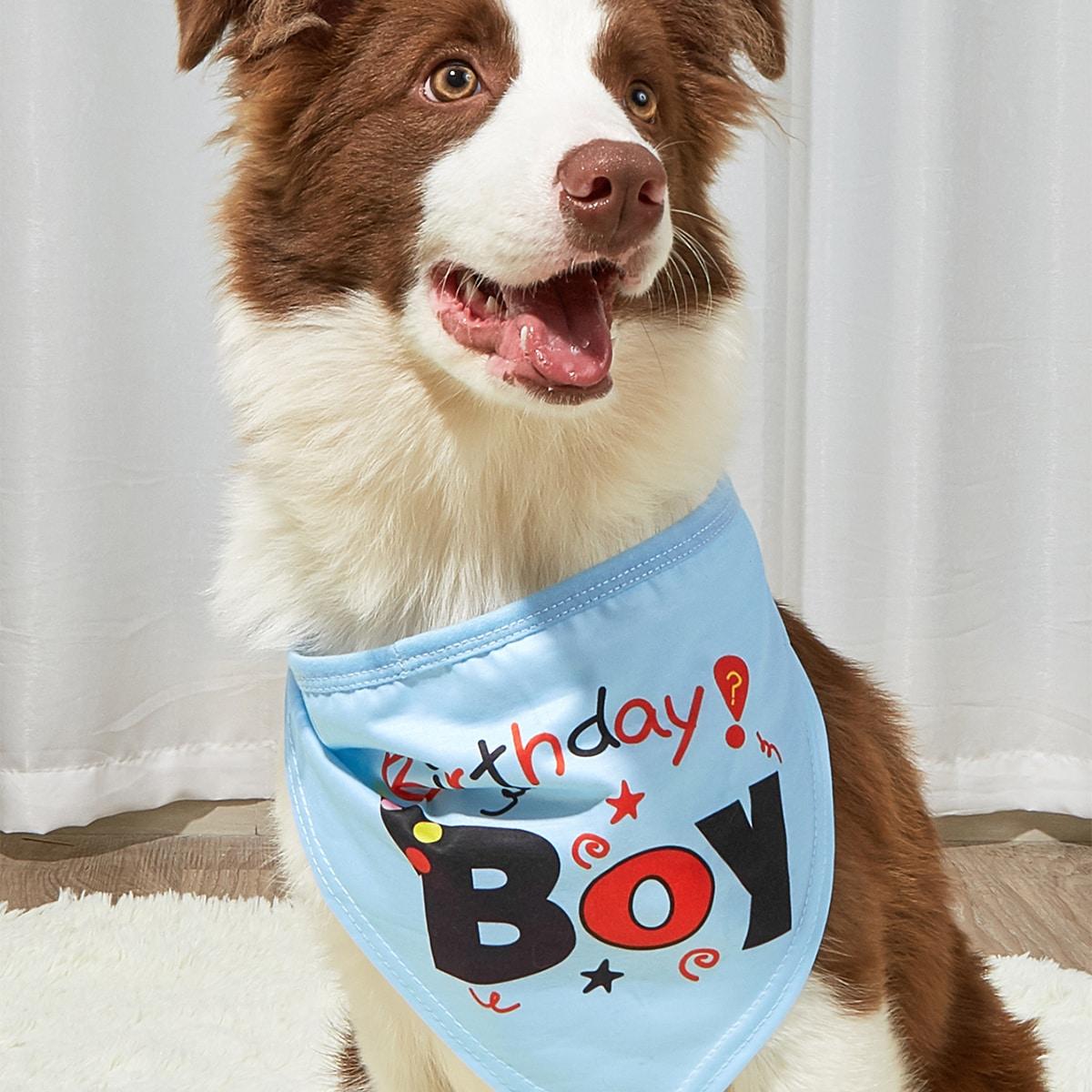 Bandana per animali domestici grafica lettera compleanno