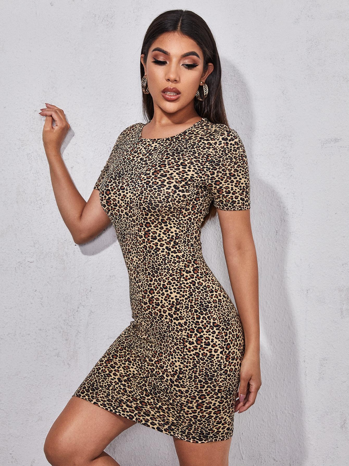 Leopard Print Bodycon Dress thumbnail