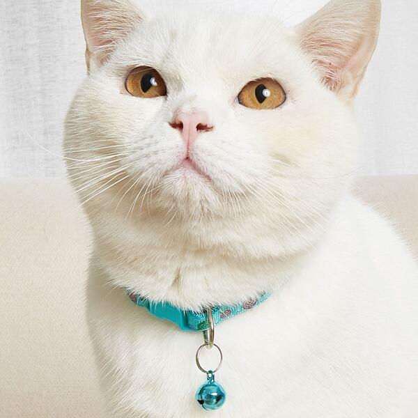 Bell Charm Lollipop Pattern Pet Collar, Mint green