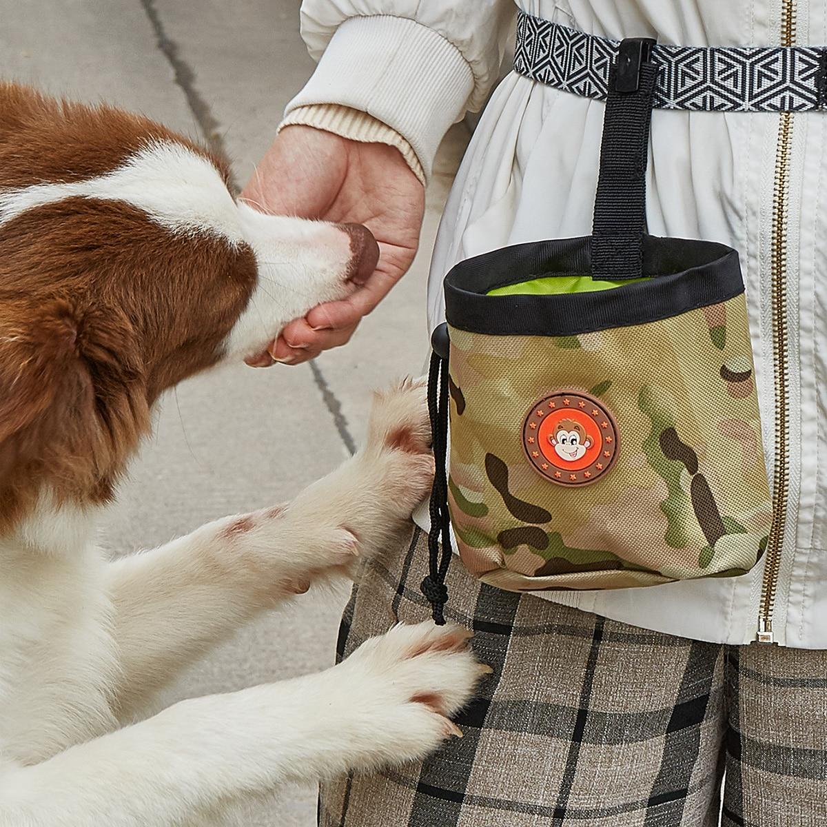 Custodia da esterno per cani