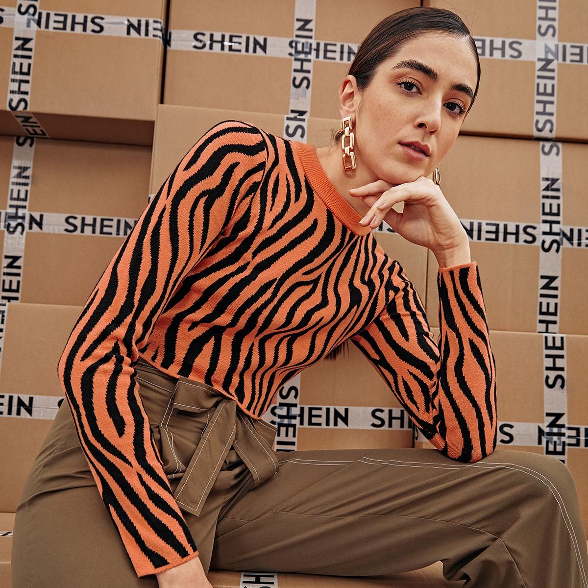 Короткий свитер в полоску зебры