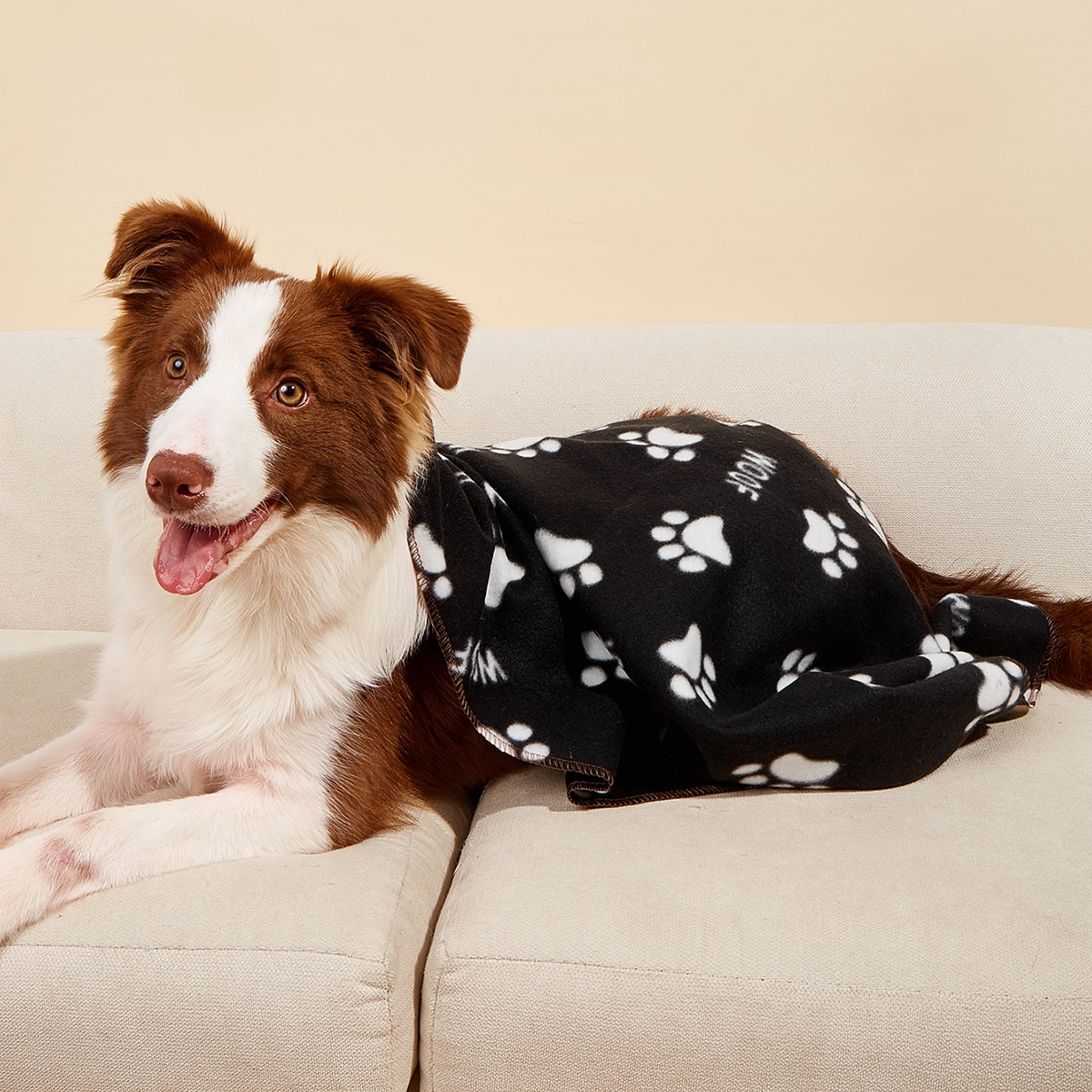 Haustier Decke mit Klaue Muster