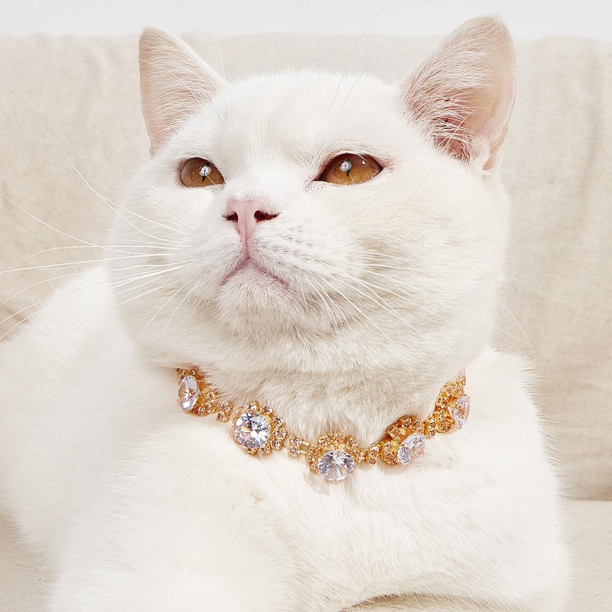 Haustier Halskette mit Strass Dekor