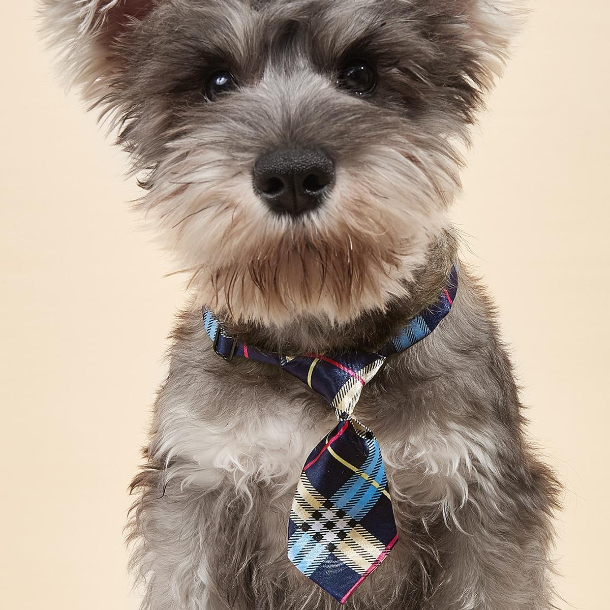 Krawatte mit Plaid Muster für Haustiere