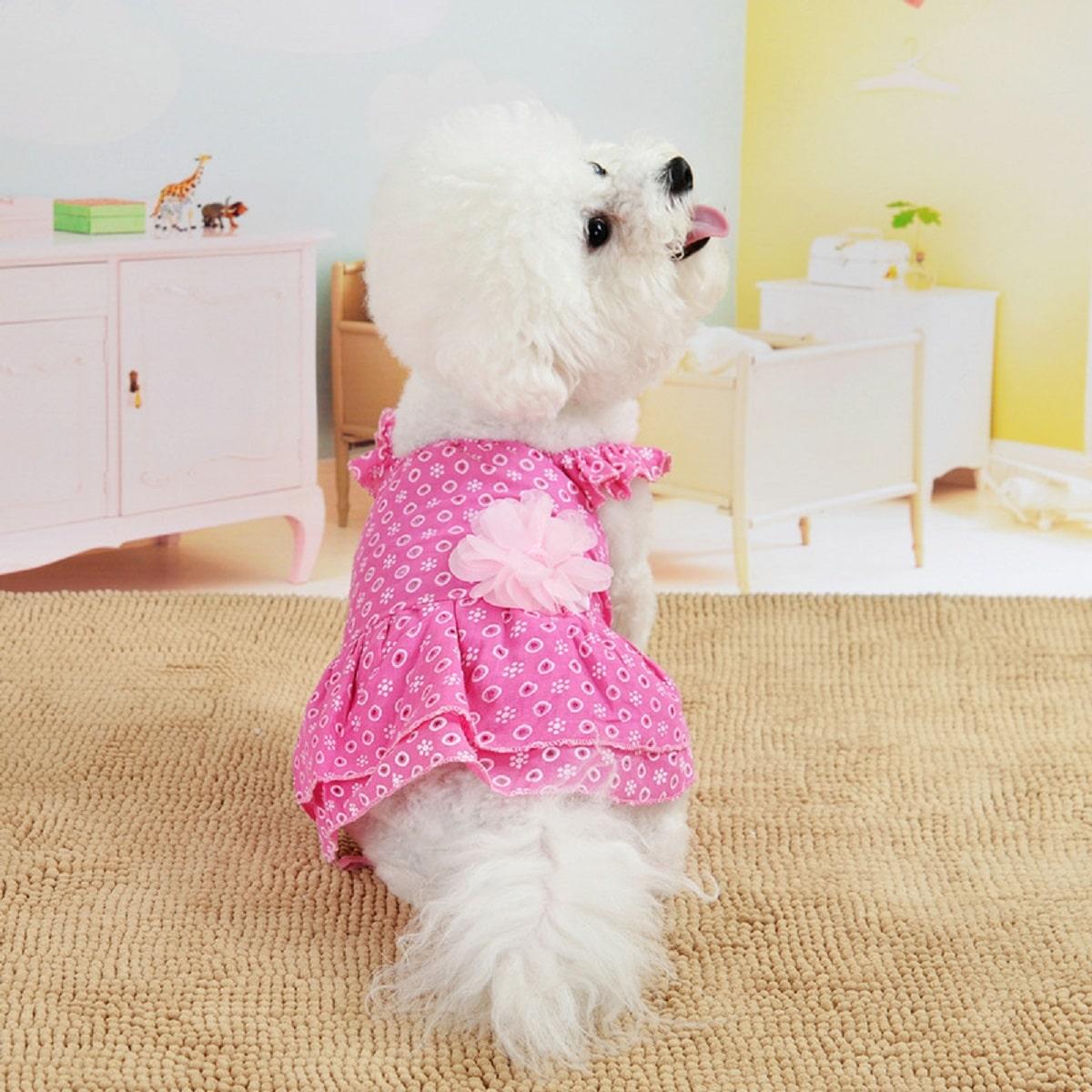 1pc Schiffy Dog Dress