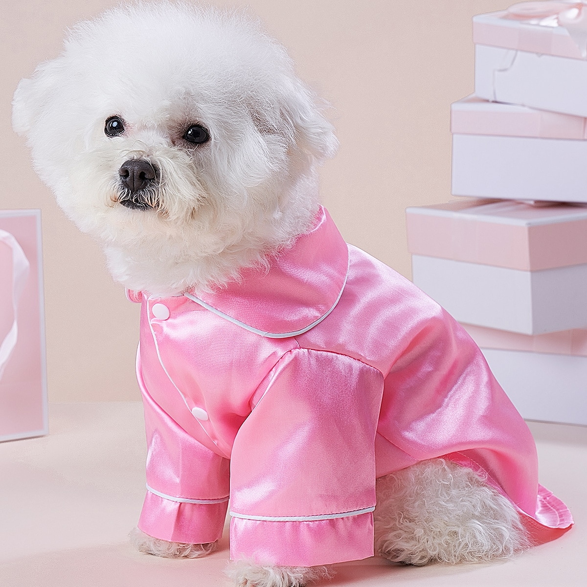 Haustier Pajama