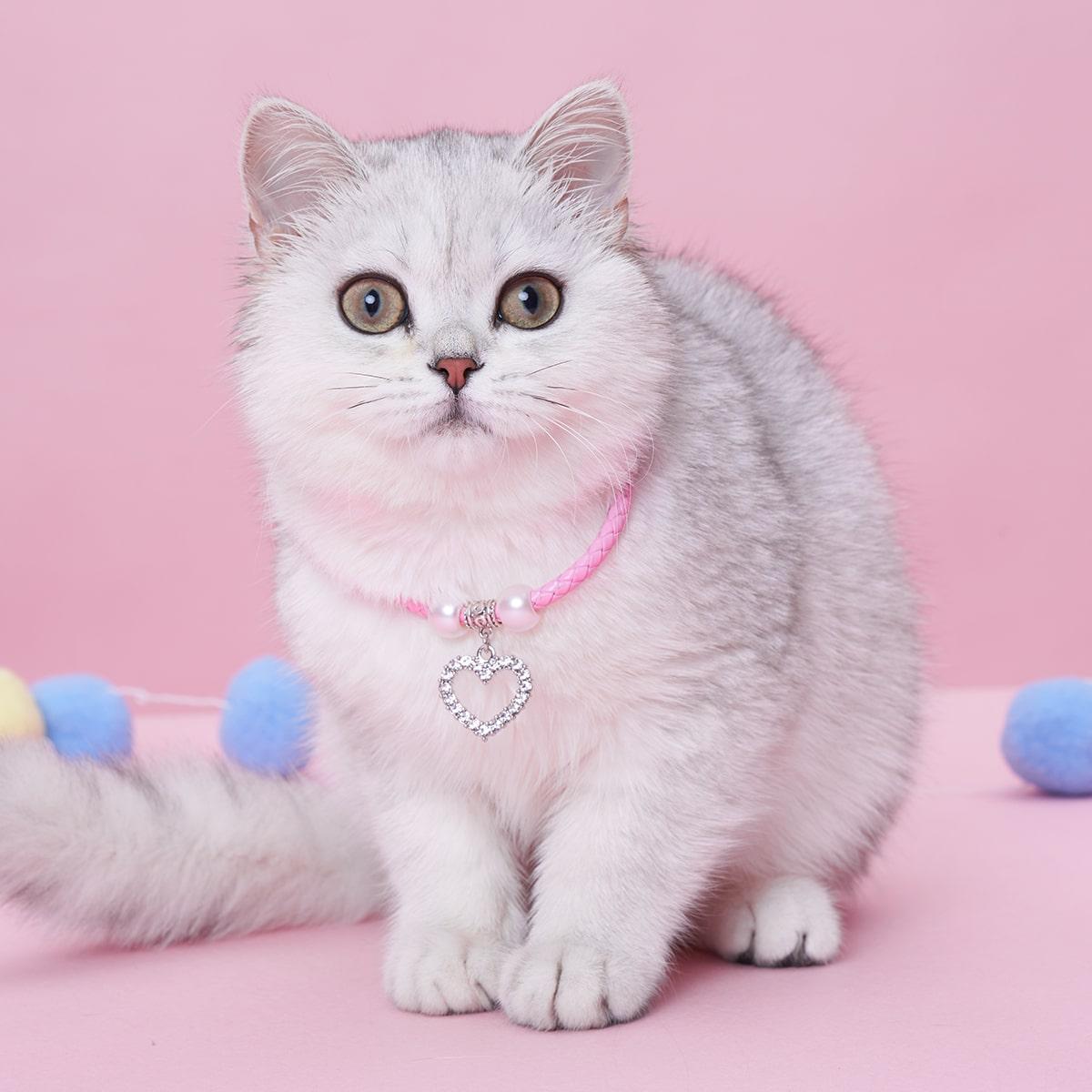 Haustier Halskette mit Herzen Dekor