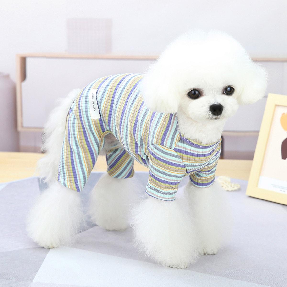 Set pigiama per animali domestici con motivo a righe
