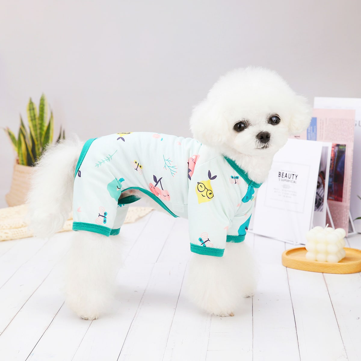 Pyjama mit Karikatur Grafik für Haustiere