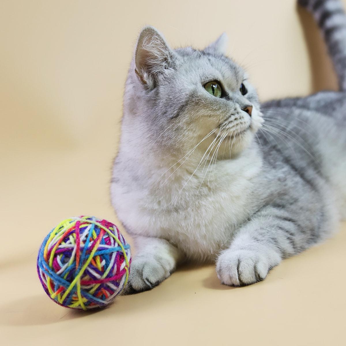 1 Stück Spielzeug für Haustier