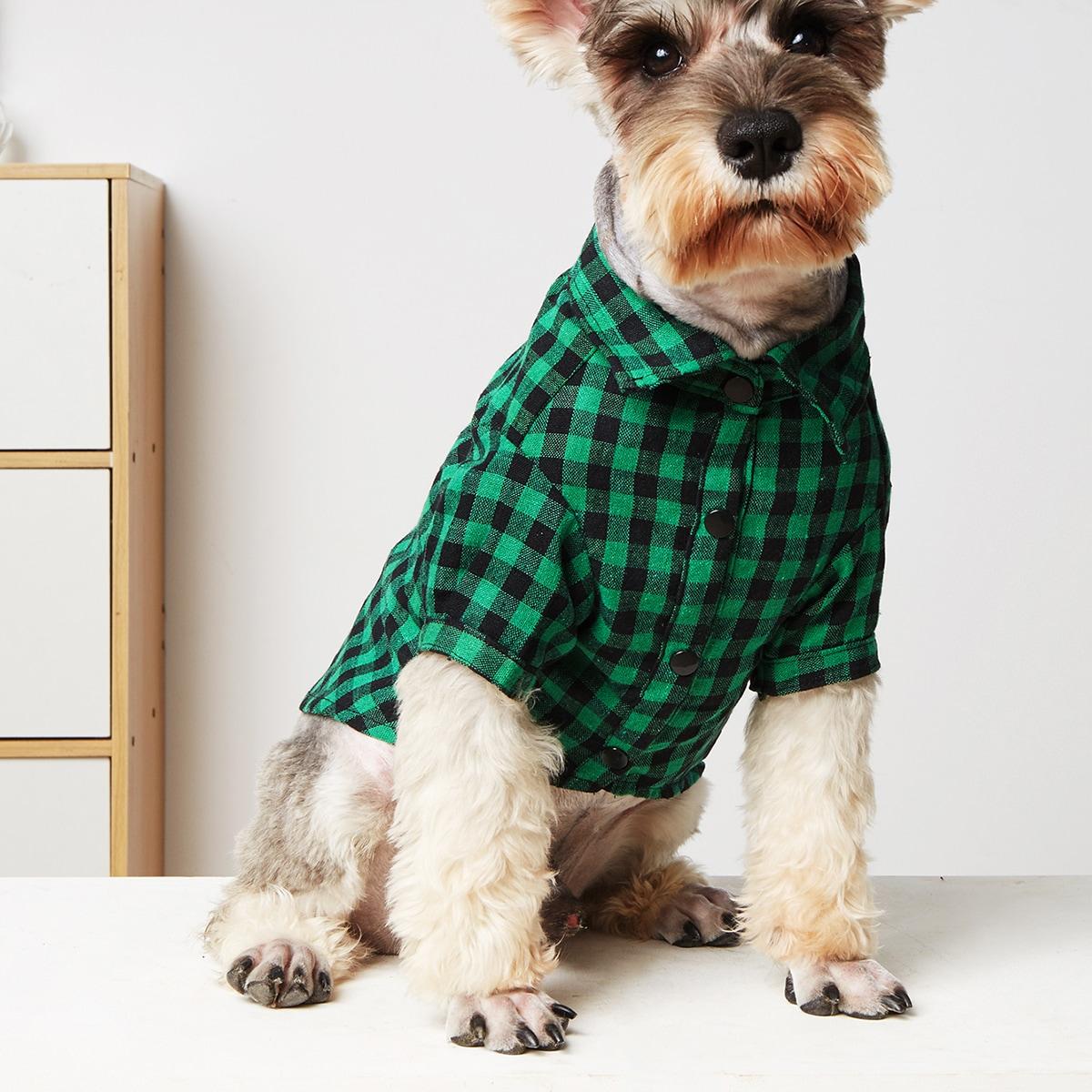 Gingham Pattern Pet Shirt