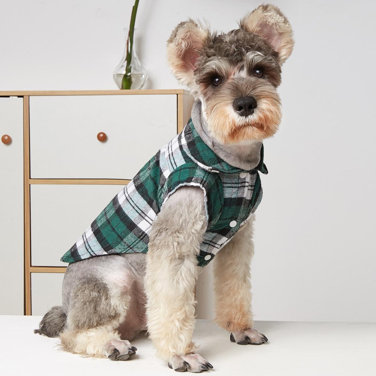 Hemd mit Plaid Muster für Haustiere
