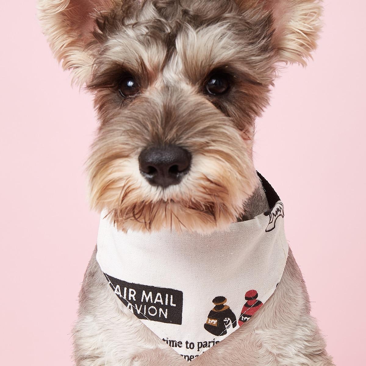 Sciarpa con lettera grafica per animali domestici