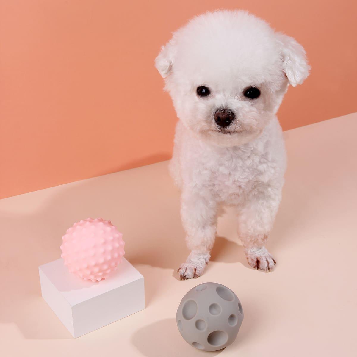 2 Stücke Silikon Spielzeug Set für Haustier