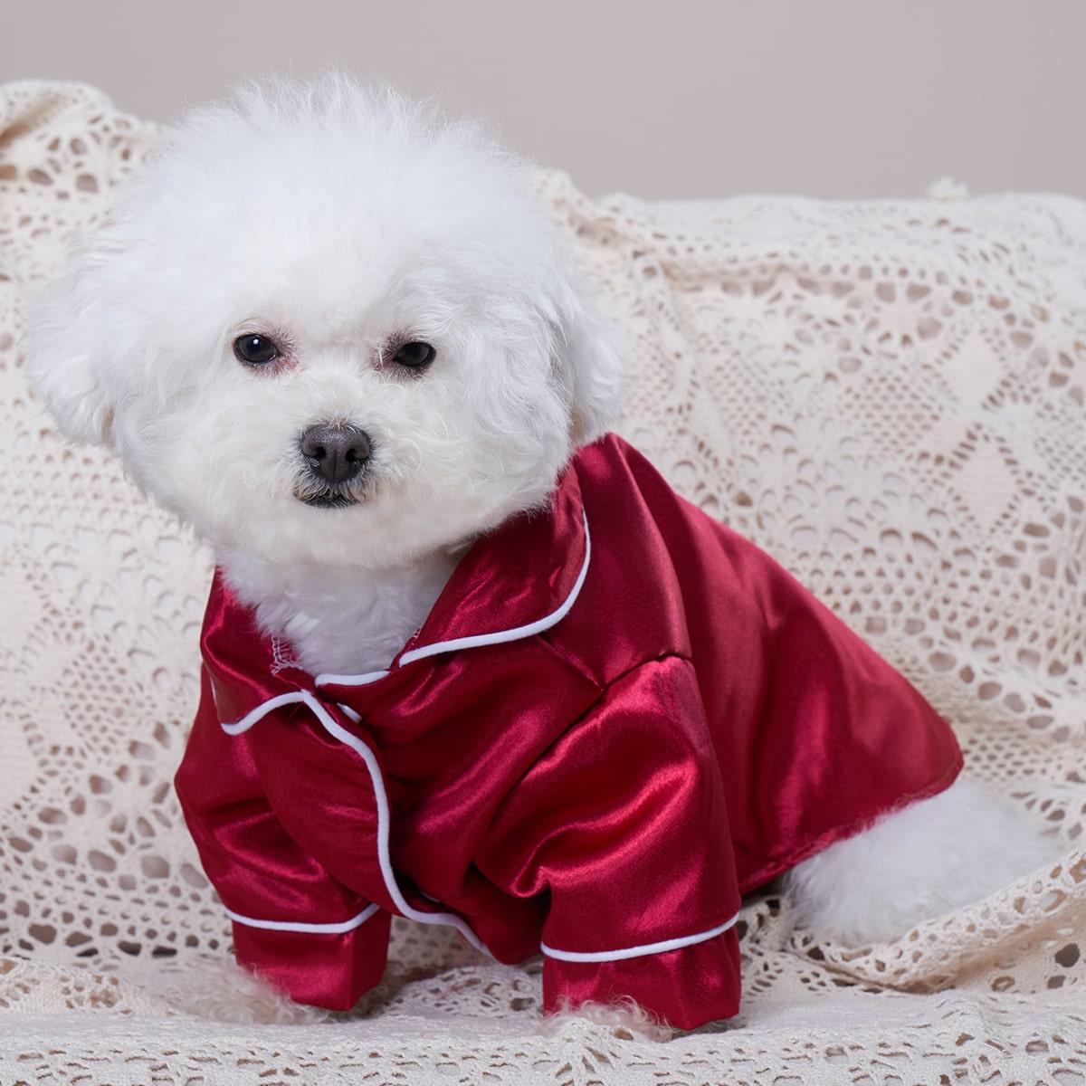 Haustier-Pyjama